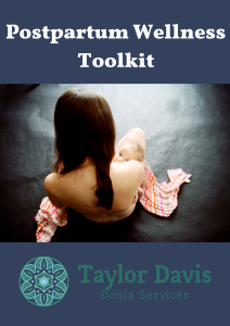 Postpartum Wellness Toolkit